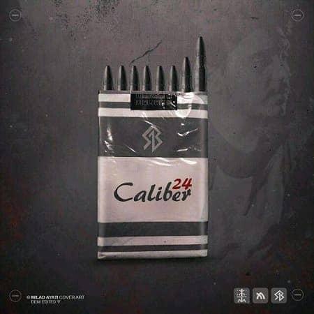 Various Artists کالیبر 24