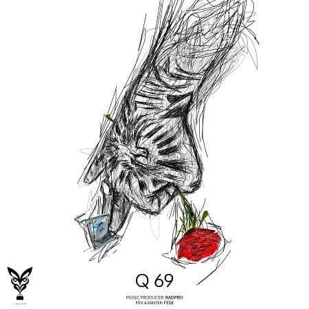 حصین Q69